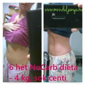NoCarb 6 hetes diéta
