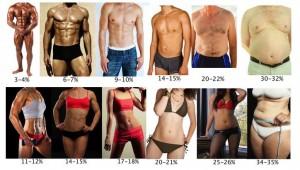 body_fat_chart