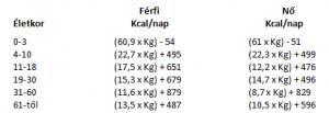 kalória számítás táblázat 1