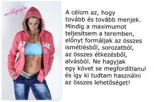 celom-az