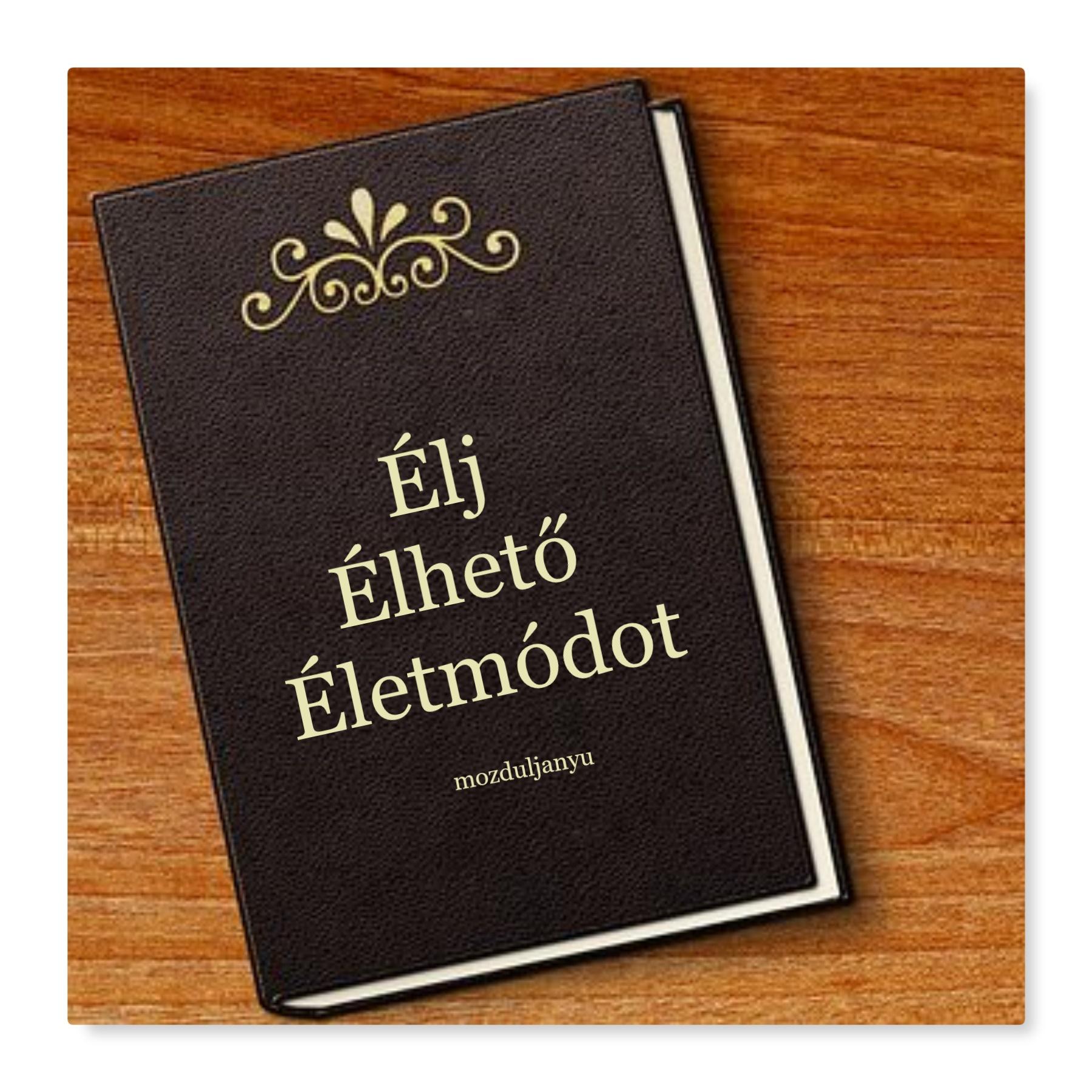 ÉLJ ÉLHETŐ ÉLETMÓDOT könyv kép
